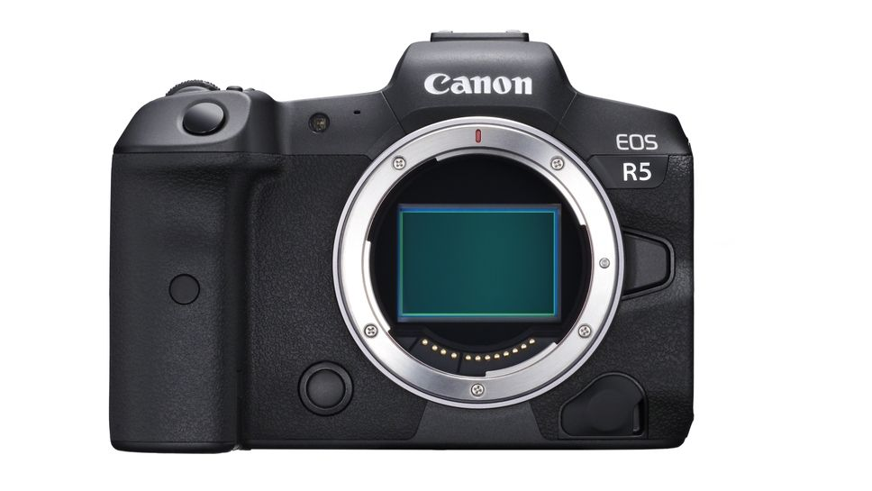 Canon EOS R6: first leaks on a derivative of the EOS R5 hybrid