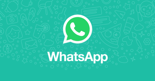 WhatsApp presents some new features such as the integration of animated stickers